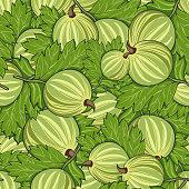 Seamless pattern all gooseberry