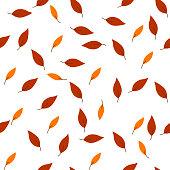 Seamless pattern autumn leafes . Vector illustration on white background.