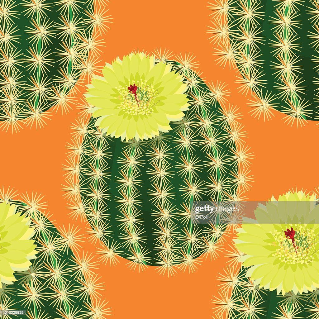 Seamless Pattern Cactus With Yellow Flower On Orange Background