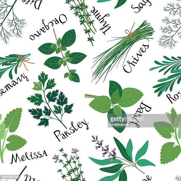 seamless pattern fresh herbs. - herbal medicine stock illustrations