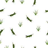 Seamless pattern green Locust and grass on white, vector eps 10