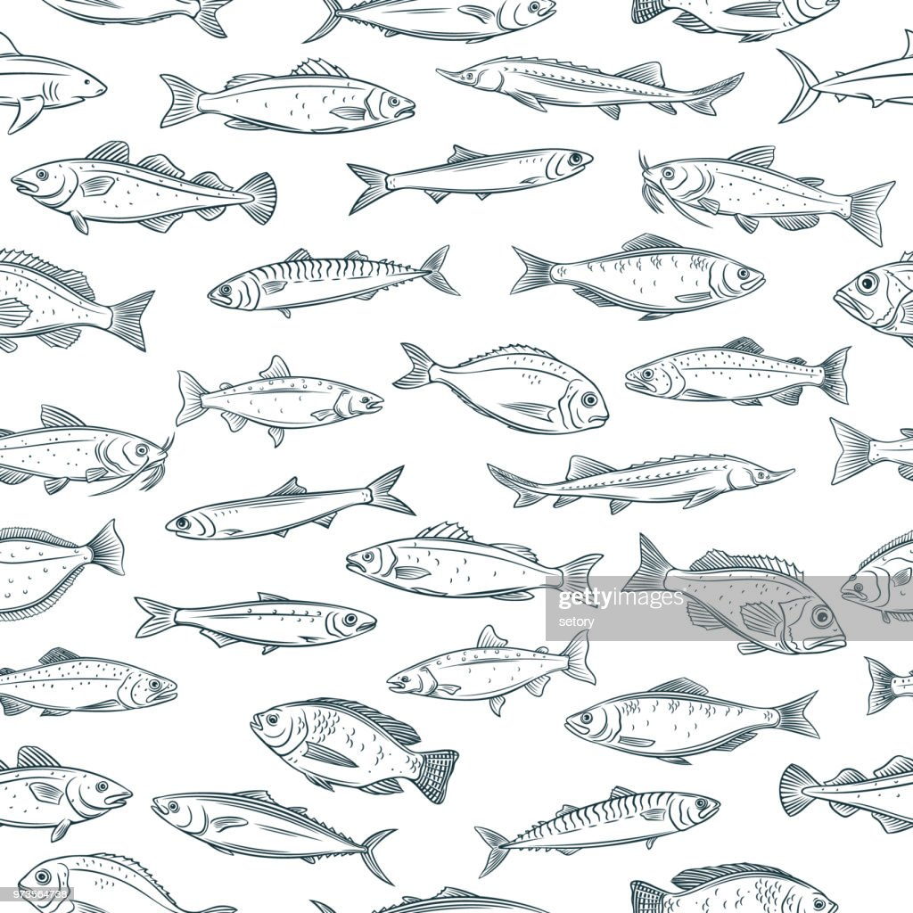 seamless pattern hand drawn fish