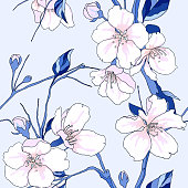 Seamless pattern, hand drawn pink sakura flowers with leaves with leaves on light blue background