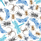 Seamless pattern of bugs and insects