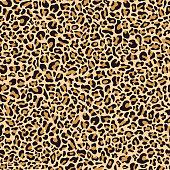 Seamless pattern of leopard skin
