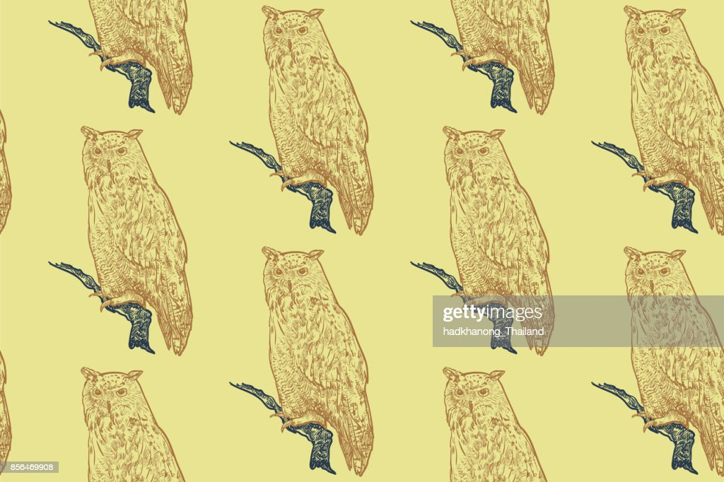 Seamless pattern of siberian eagle owl background