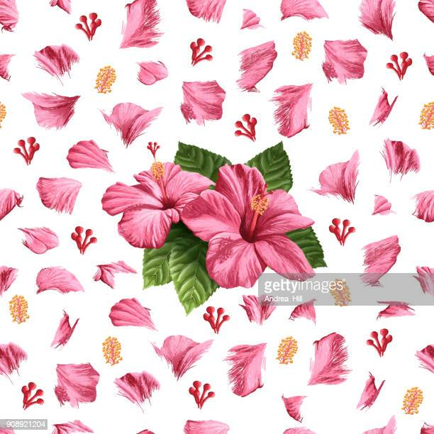illustrations, cliparts, dessins animés et icônes de seamless pattern de fleurs d'hibiscus vector - hibiscus