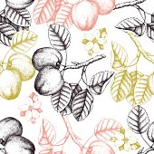 Seamless pattern with apple sketch.