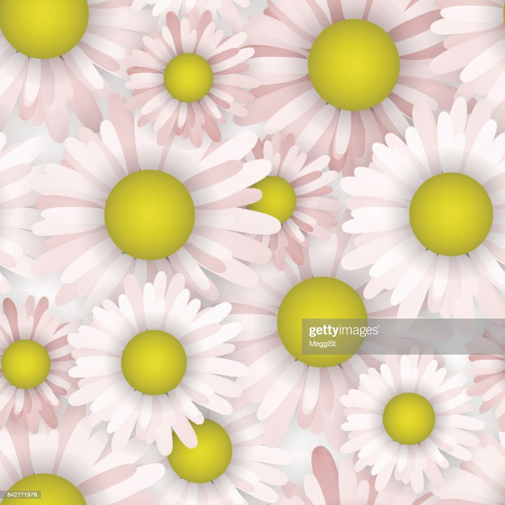 Seamless pattern with daisy. Blooming wallpaper. Cloth pink pastel colors.