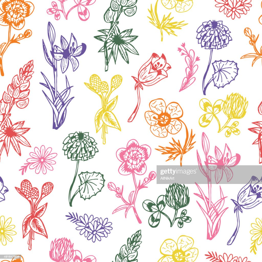 Seamless Pattern With Flowers Wildflowers Vintage Floral Wallpaper