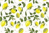 Seamless pattern with juicy lemon fruits and seed without background