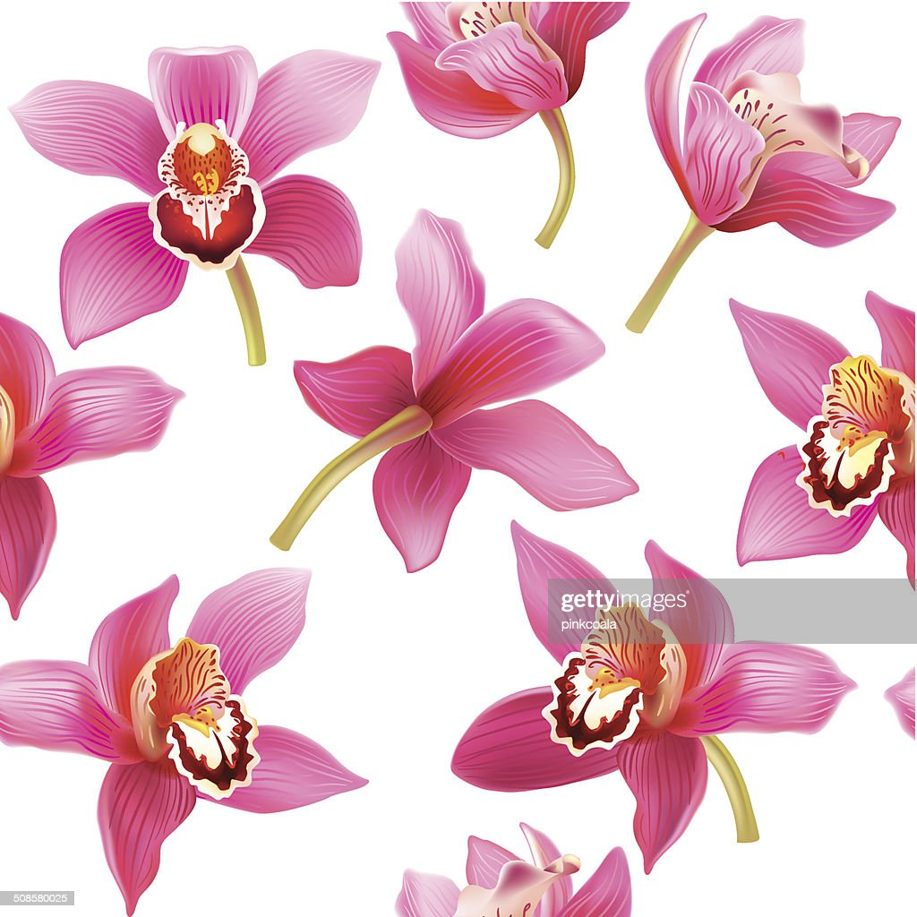 Seamless pattern with orchid : Vectorkunst