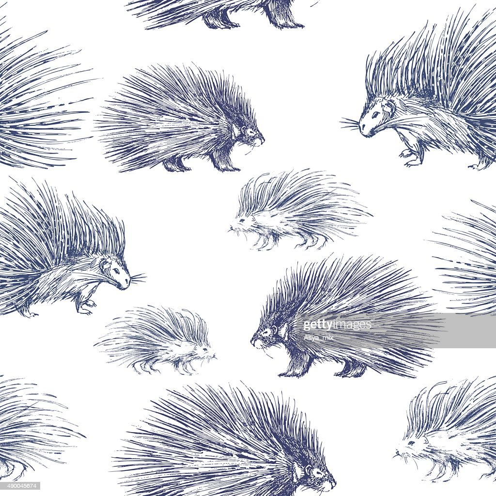 Seamless pattern with porcupines.