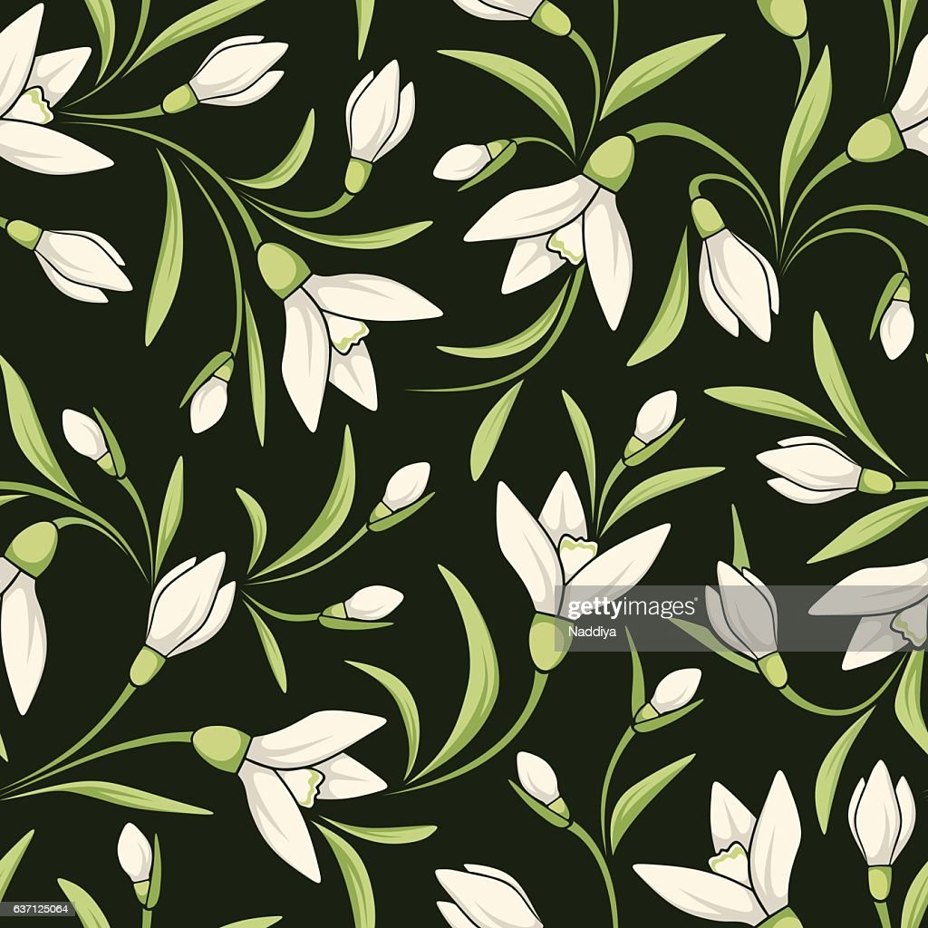 Seamless pattern with white snowdrop flowers. Vector illustration.