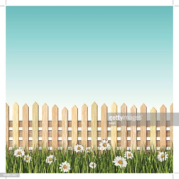 seamless picket fence and daisys background