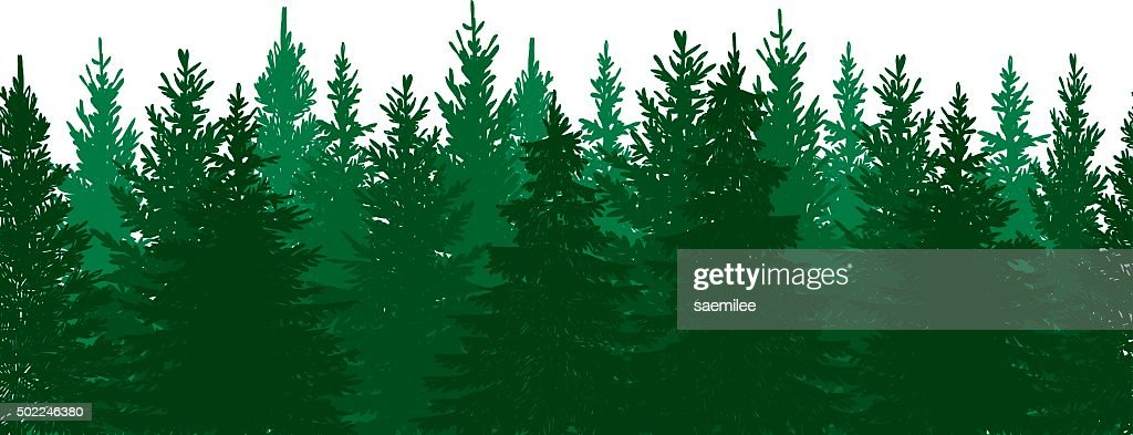 Seamless Pine Tree Forest Background : stock illustration