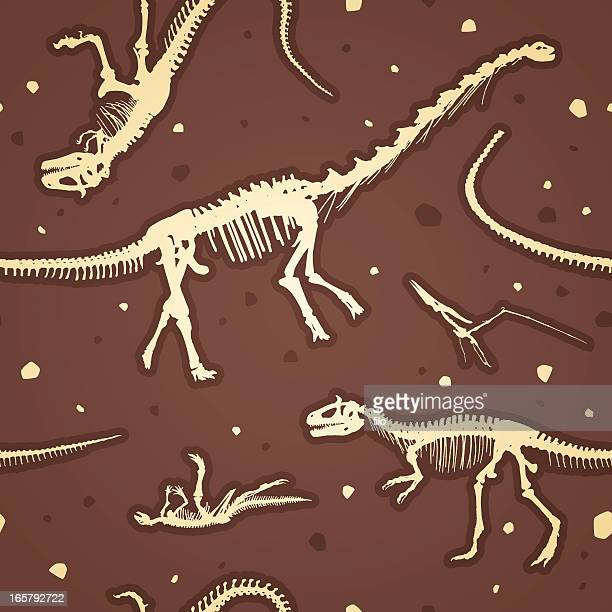 seamless prehistoric dinosaur skeletons - jurassic stock illustrations, clip art, cartoons, & icons