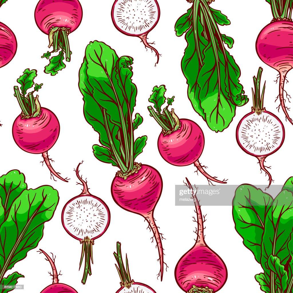 seamless ripe radish