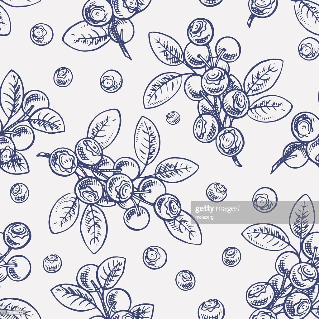 seamless sketch blueberry