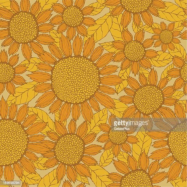 seamless sunflower pattern - sunflower stock illustrations, clip art, cartoons, & icons