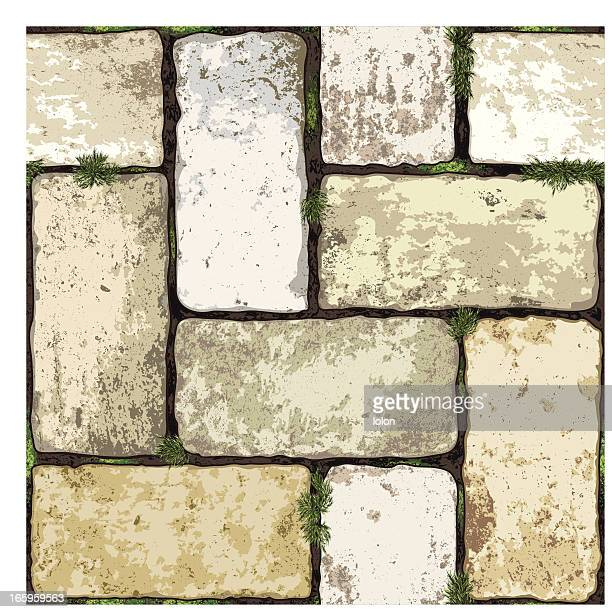 seamless terracotta floor with moss
