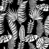Seamless vector floral summer pattern background with black and white tropical leaves. Use for wallpapers, web page backgrounds,  textile, paperhangings.