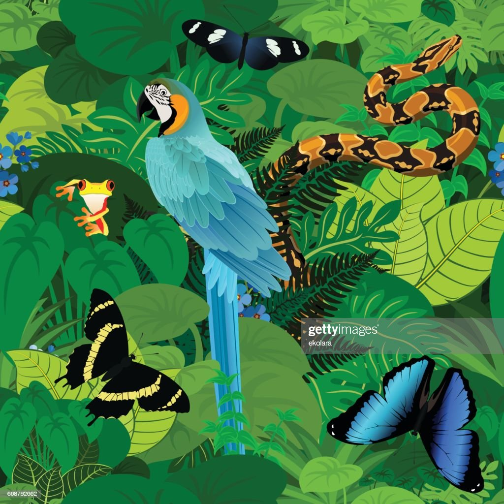 Seamless vector tropical rainforest Jungle background with ara makaw parrot, python and butterflies