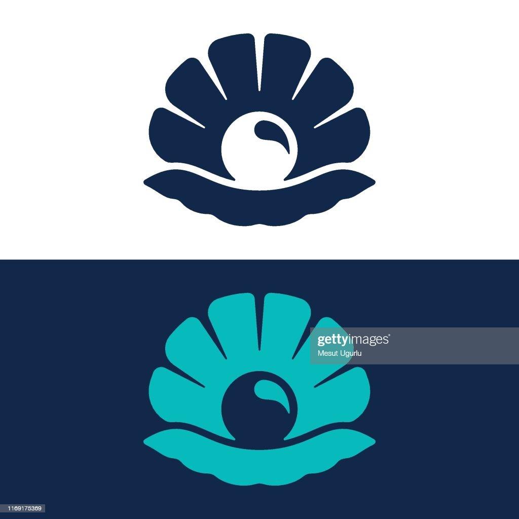 New Zealand shells – Shellfish – Te Ara Encyclopedia of New Zealand