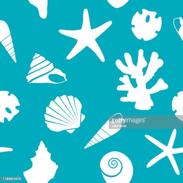 seashell pattern - aquatic organism stock illustrations