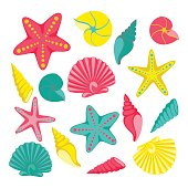 Seashells set. design for holiday greeting card and invitation of seasonal summer holidays, summer beach parties, tourism and travel