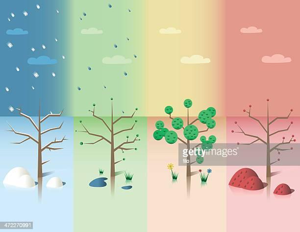 illustrations, cliparts, dessins animés et icônes de saison change [ vecteur ] - les 4 saisons