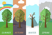 season icon nature tree background. Tamplate for web and mobile