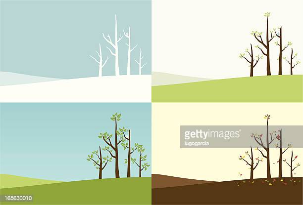 season of trees - bare tree stock illustrations