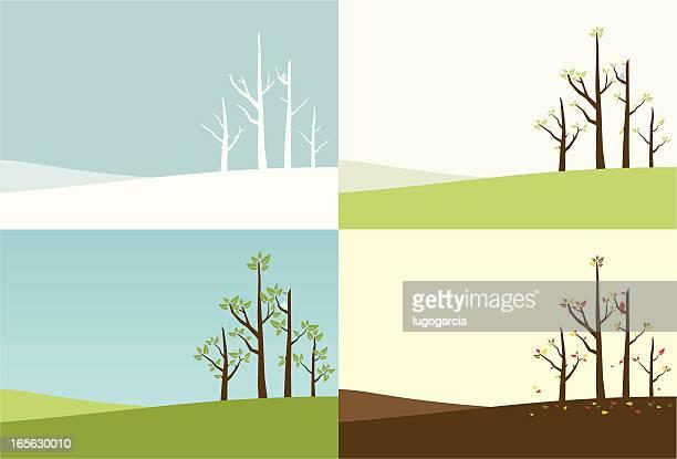 ilustraciones, imágenes clip art, dibujos animados e iconos de stock de temporada de árboles - las cuatro estaciones