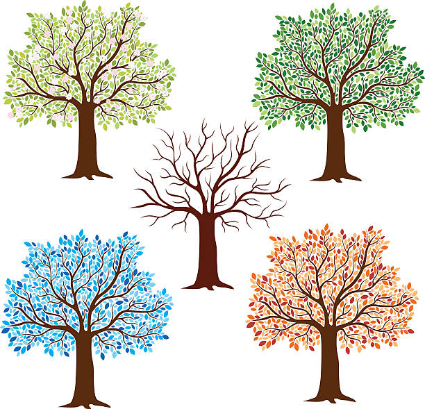 Seasonal Trees Wall Art