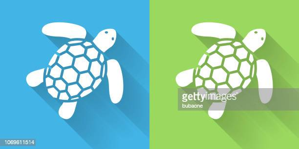 SeaTurtle Icon with Long Shadow