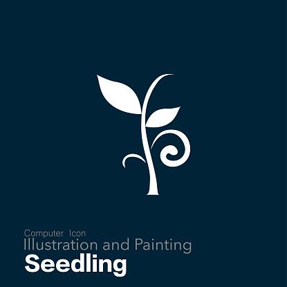 seedling - gettyimageskorea