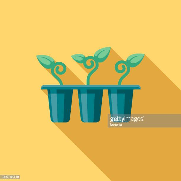seedlings flat design springtime icon - bean sprout stock illustrations