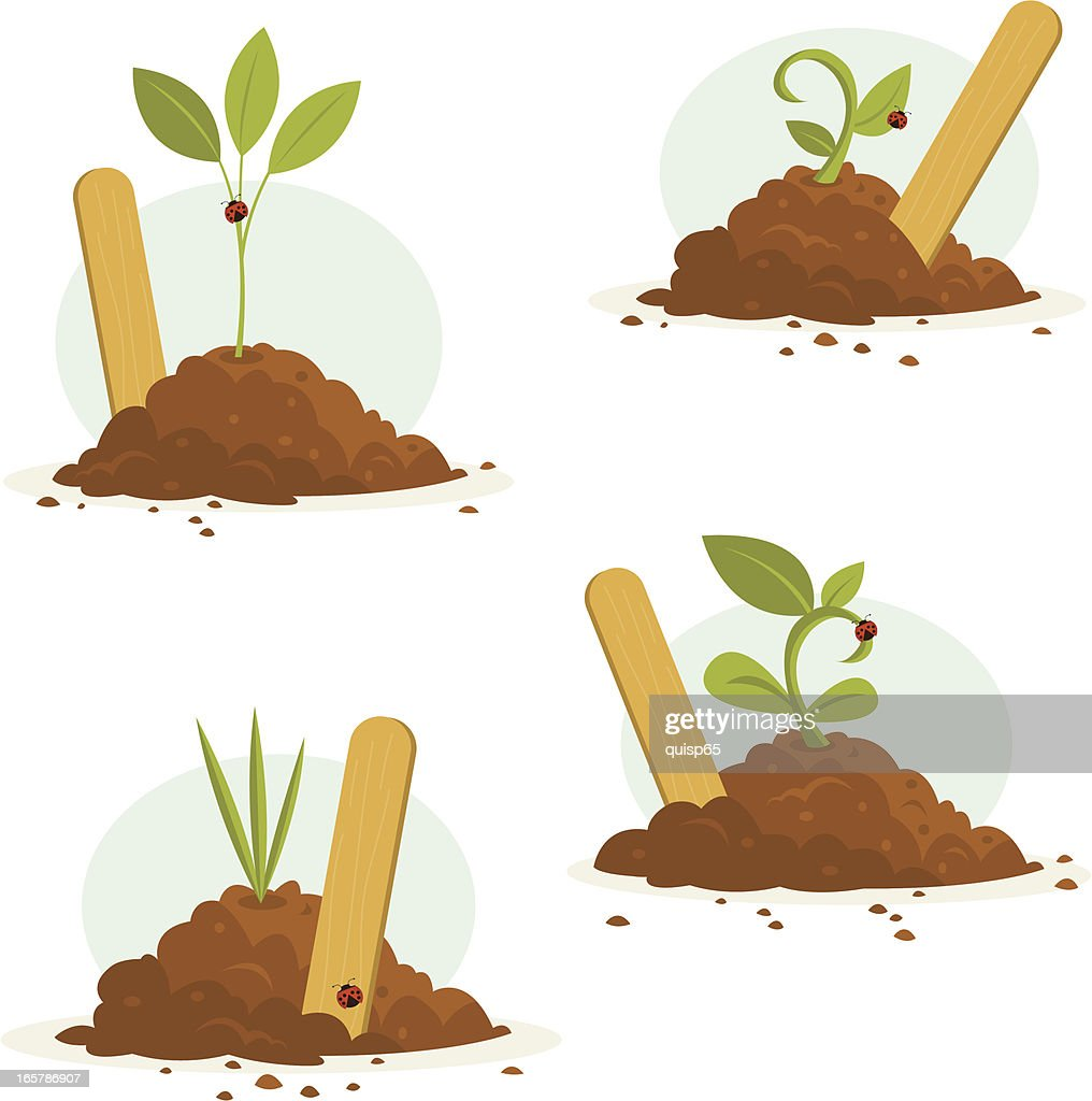Seedlings with Markers Set : stock illustration
