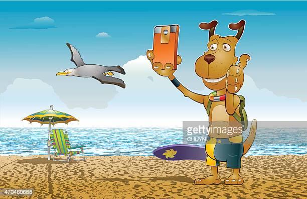 illustrations, cliparts, dessins animés et icônes de selfie sur la plage - chien humour