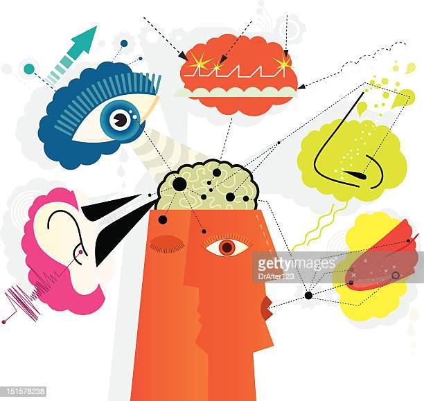 sensory perception - sensory perception stock illustrations