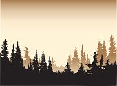 Sepia Tone Forest Background
