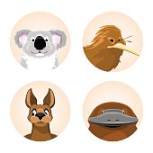 set avatars Australian animals. koala, kiwi, kangaroo, platypus. vector illustration