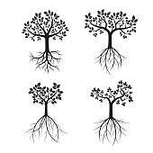 Set black Trees and Roots. Vector Illustration.