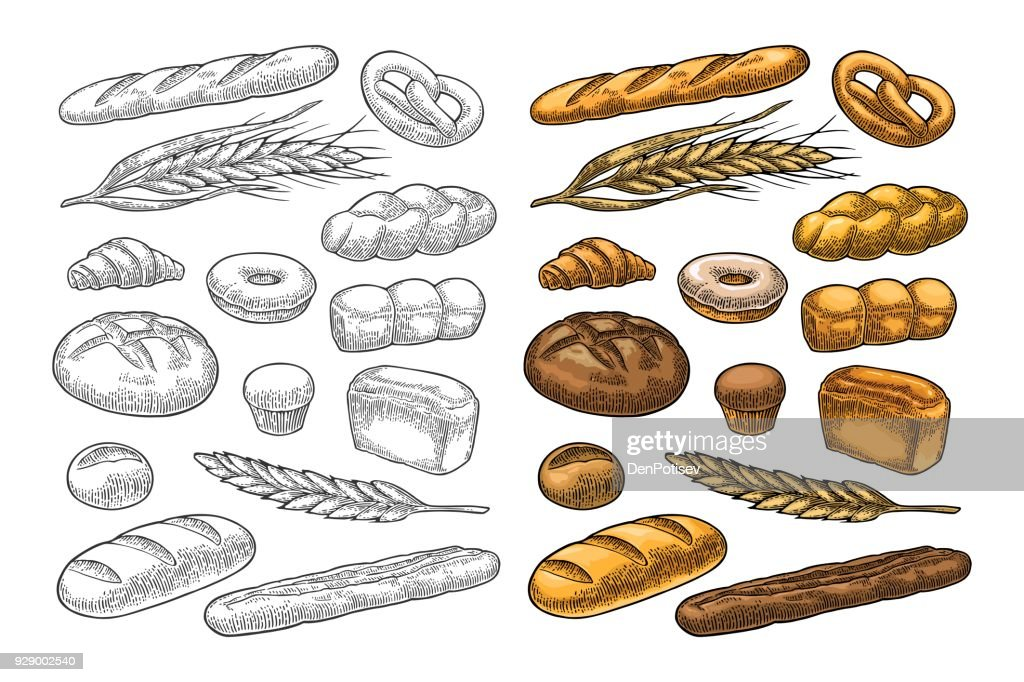 Set bread. Vector color vintage engraving