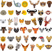 set Cartoon Animals from all over the world,  muzzle animal, avatar isolated on white background. Vector