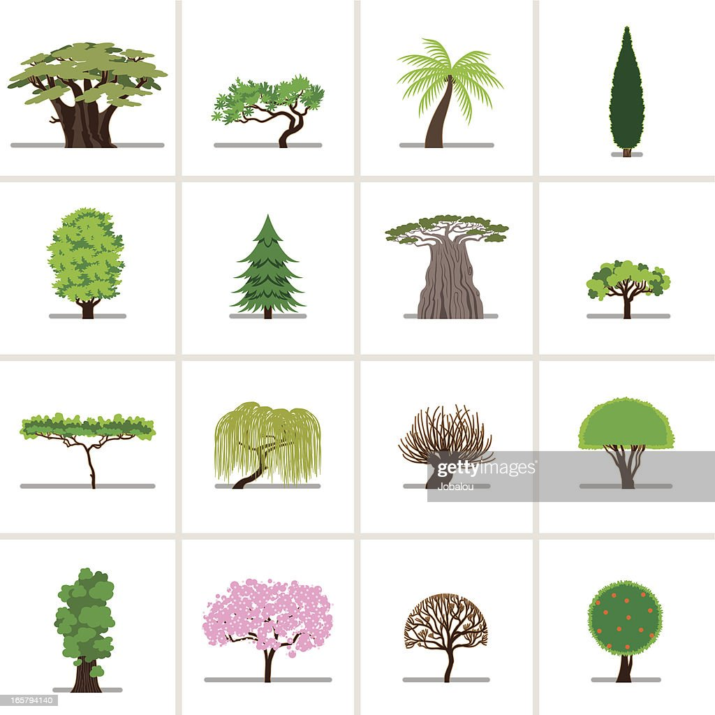 Set Cartoon Trees