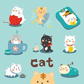 Set Cute Cat