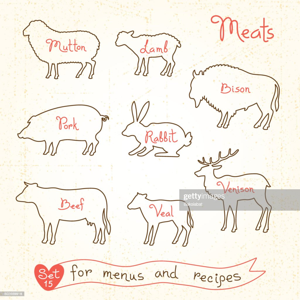 Set drawings of meat symbols, beef, pork, lamb, mutton, rabbit