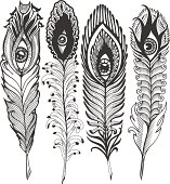 set  feather with eyes